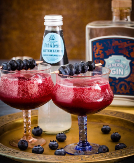 The Ultimate Blueberry Gin and Tonic photo
