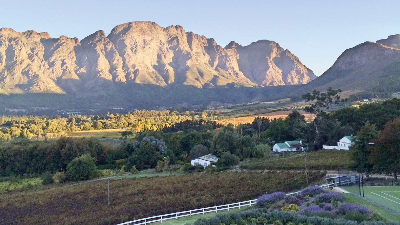 New Site Puts S. African Wines One Click Away: Travel Weekly photo