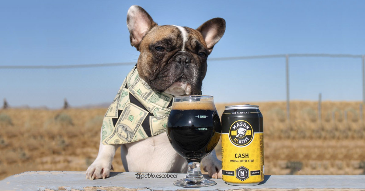 Hop Take: Beer Is Still Number One, Beer Dogs Are Everything, & Other Beer News photo