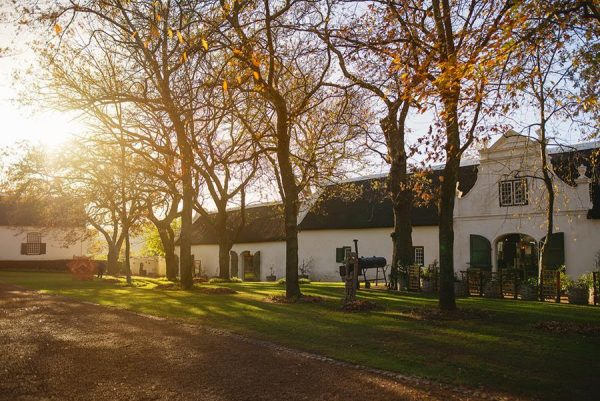 Passion and Provenance Create Inspired Farm Dining on Historic Boschendal Farm photo