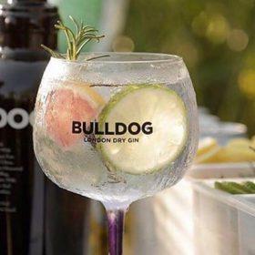 Bulldog Gin Kicks Off Road To Ibiza On-trade Initiative photo
