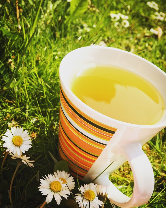 How Much Green Tea Should You Drink to Lose Weight? photo