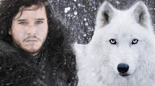 jon e1500015193348 Drink your way through Game of Thrones with the Wolftrap
