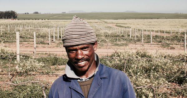 Lubanzi, A Wine Label With A Social Conscience photo