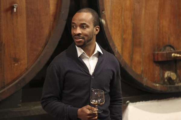 SA Sommeliers Discover Brandy Excellence at Backsberg Tasting photo