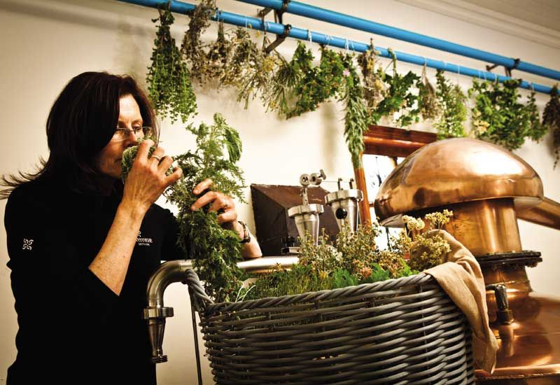 Lorna Scott Adds Female Fynbos Flair To Sa's Gin Segment photo