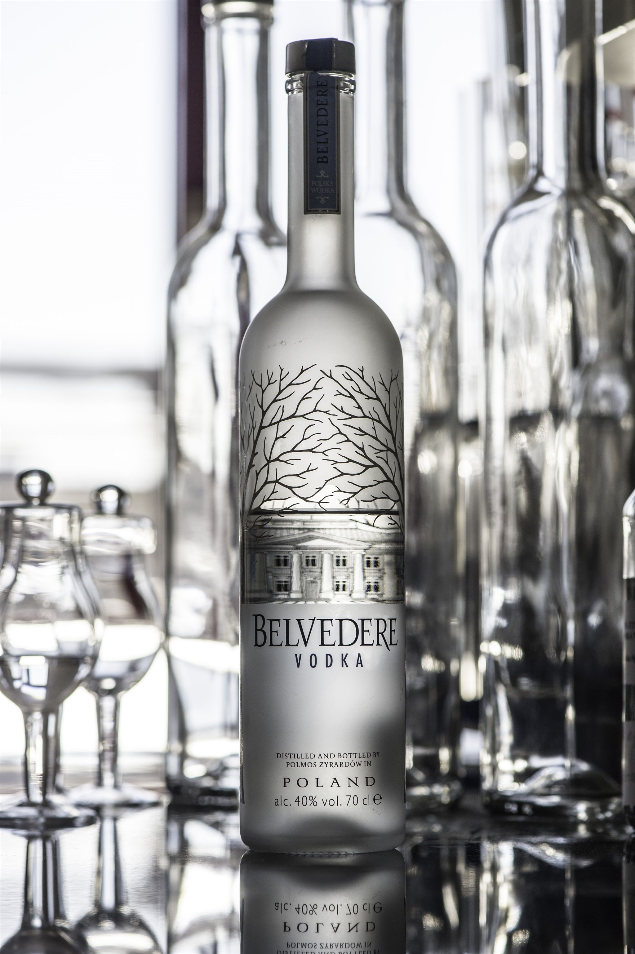 Belvedere Vodka Wins Gold At International Csr Awards photo