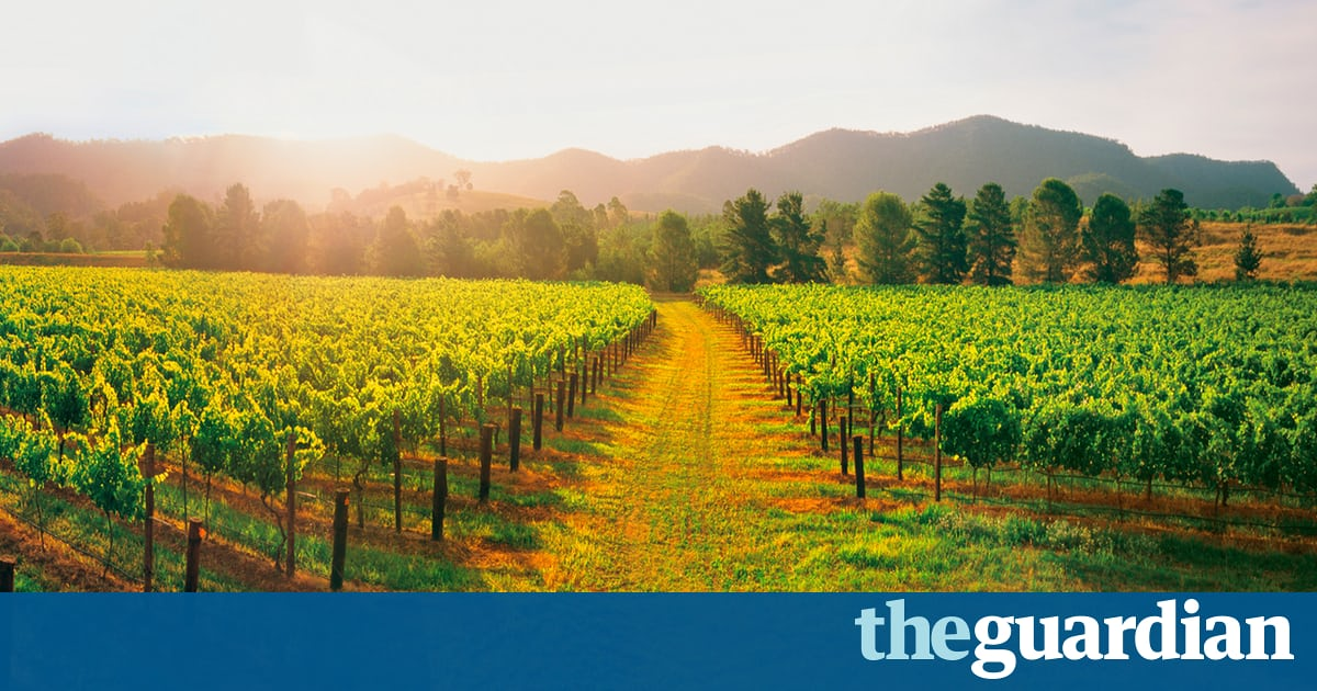 Aussie Rules: Great Wines From Down Under photo