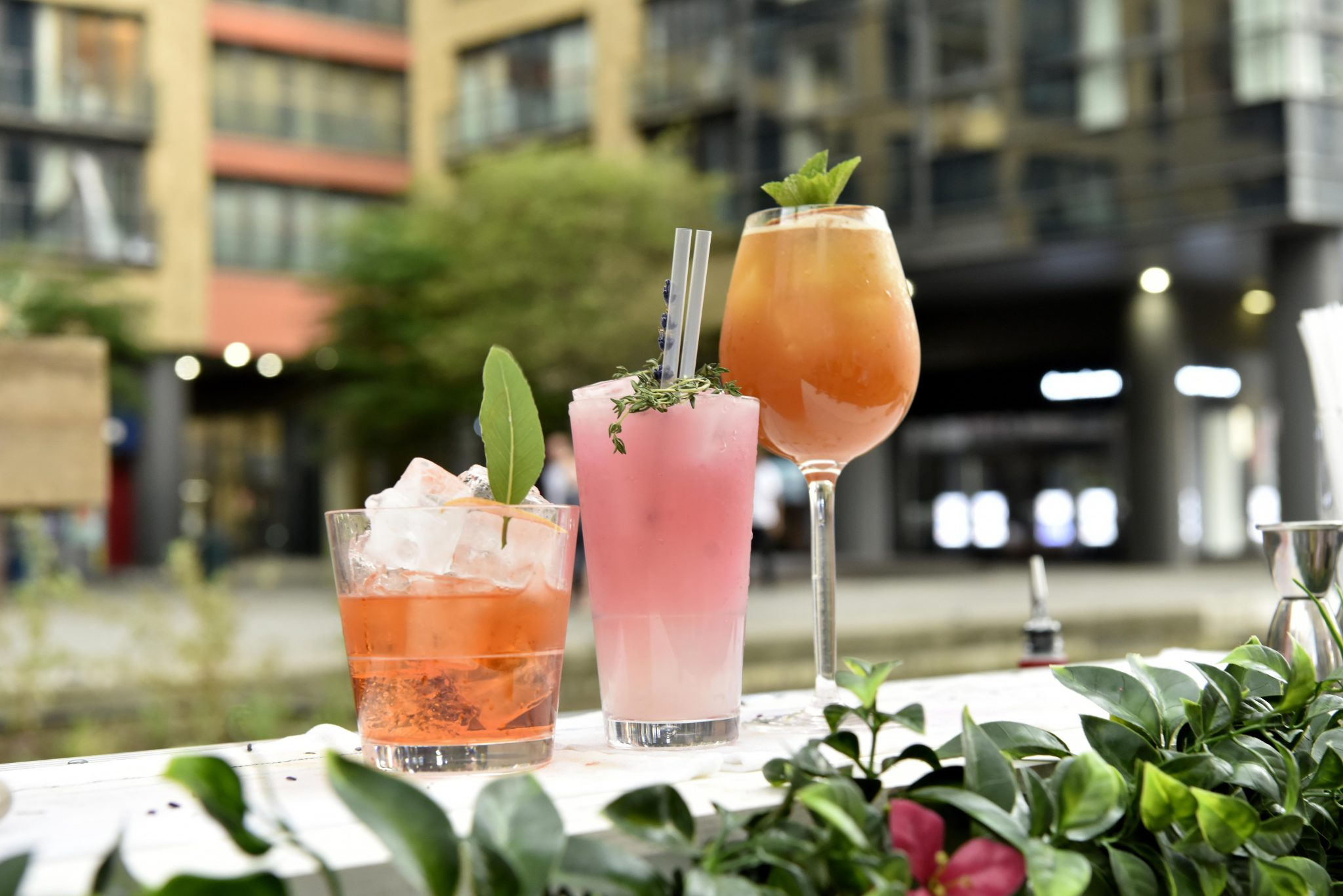 Lockhouse's Botanical Bar: An Oasis For Gin Lovers photo