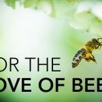 For the love of bees photo