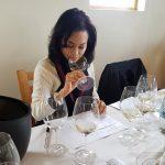Michelangelo International Judges Make Case for Pinotage and Chenin Blanc photo