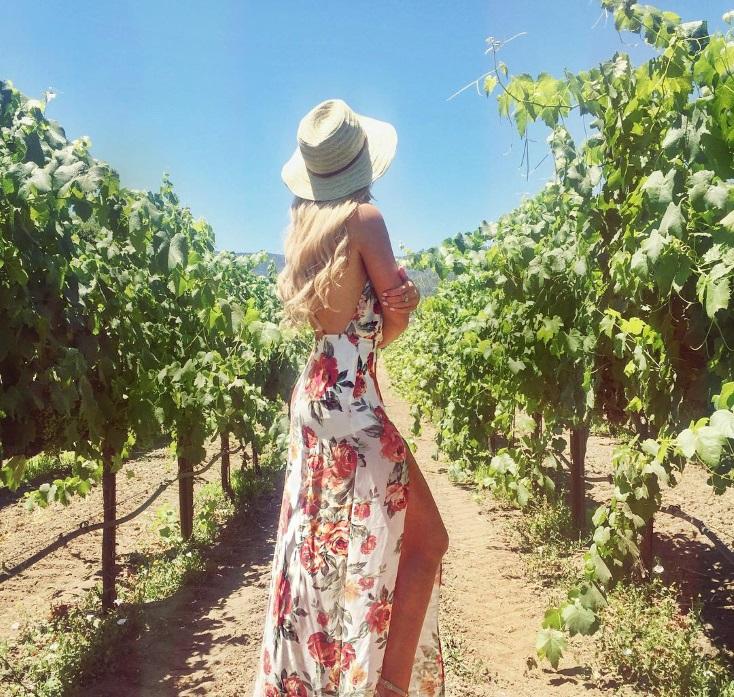 Der Ungeplante Wein photo