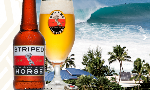 The Striped Horse Challenge Presented by Zigzag in association with Hurricane Surf photo