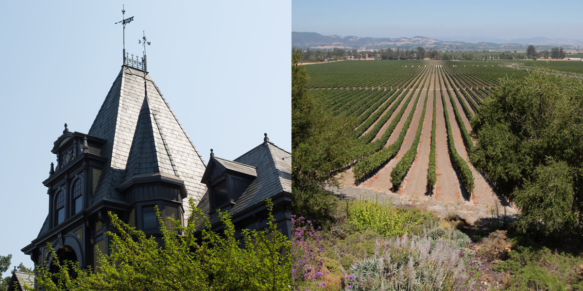 Napa Wine Country Is Overrun By Tourists, So People Are Abandoning It For Sonoma ? We Visited Both To See Who Does It Better photo