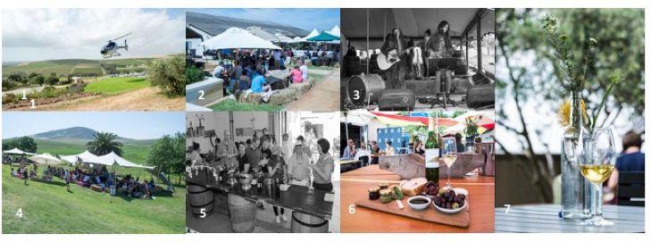 Durbanville Wine Valley Prepares For The Season Of Sauvignon Festival photo