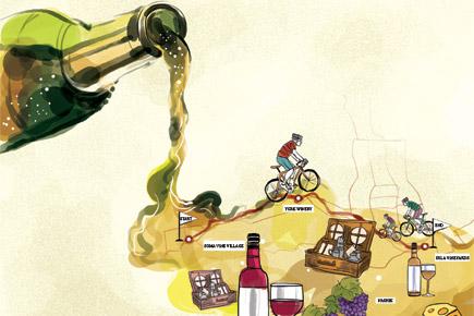 Travel: Explore Three Vineyards In Nashik On Bicycle photo