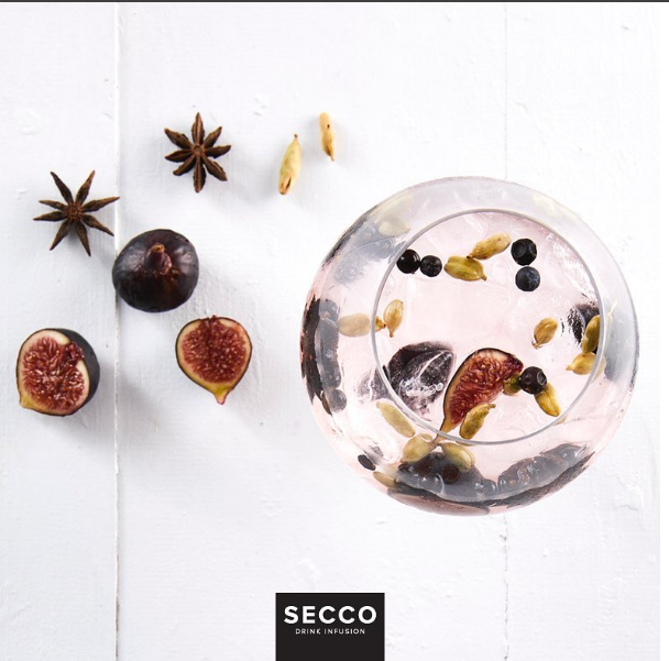 Step-up your Gin and Tonic game with Secco freeze dried fruits photo