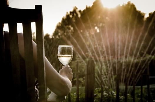 Top 5 Wines To Drink This Spring photo