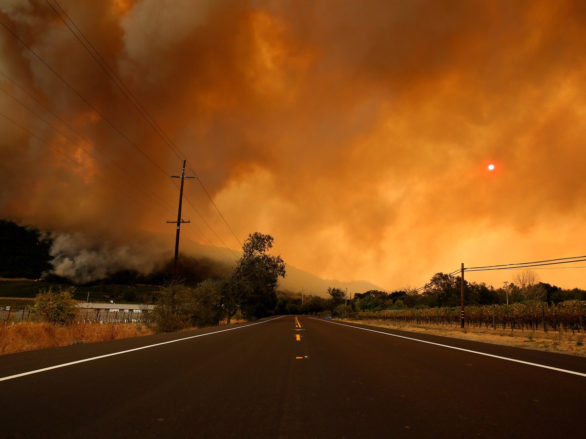 What California's Wildfires Have Done To Wine Country photo