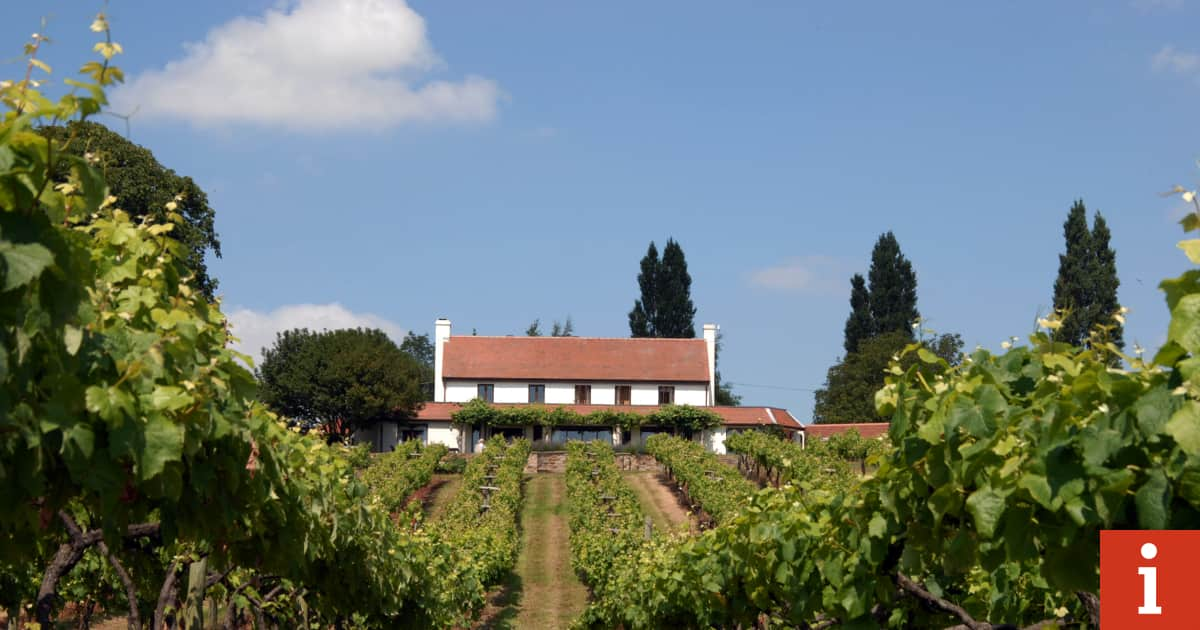 Iweekend Hotel Of The Week ? The Three Choirs Vineyard, Newent, Gloucestershire photo