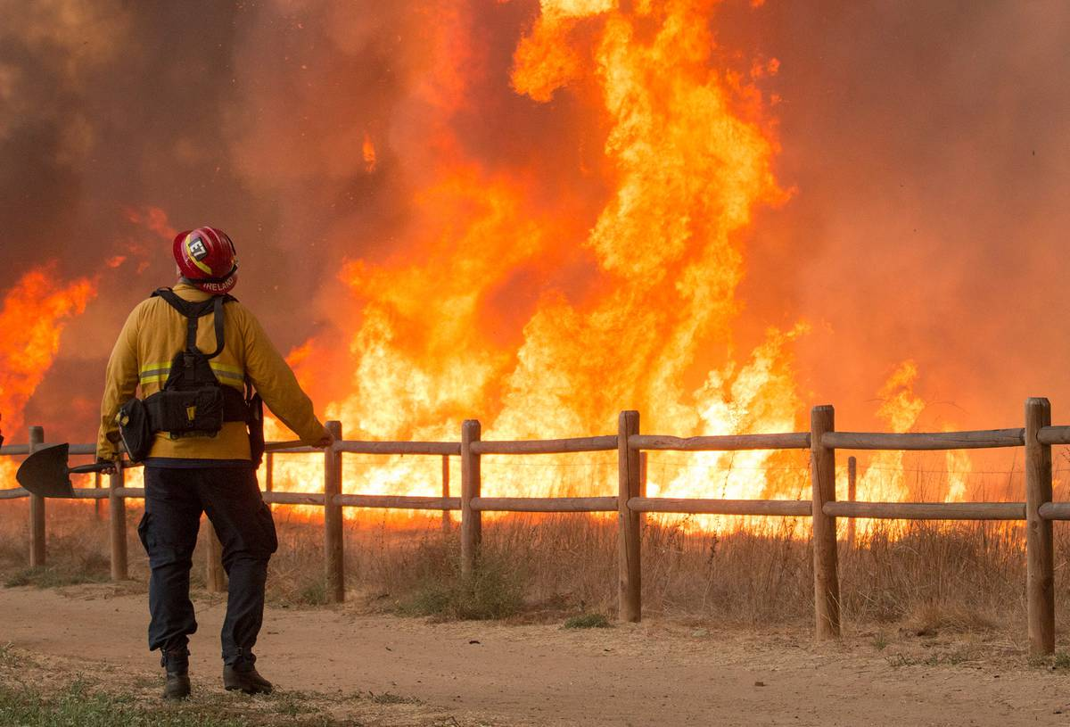 Former Whanganui Man Battles California Killer Wildfires photo