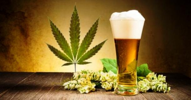 Could Cannabis-Infused Beer Be the Next IPA? photo
