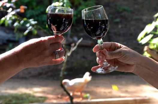 Experts Debunk The Biggest Myths About Wine photo