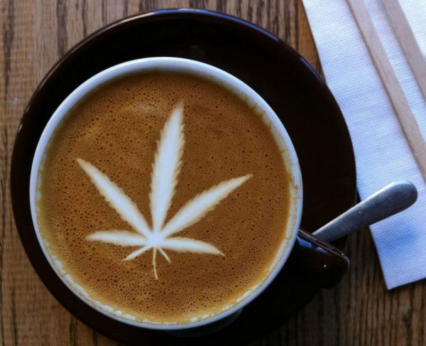 cannabis e1508331272435 CBD In Drinks: Whats The Hype About?