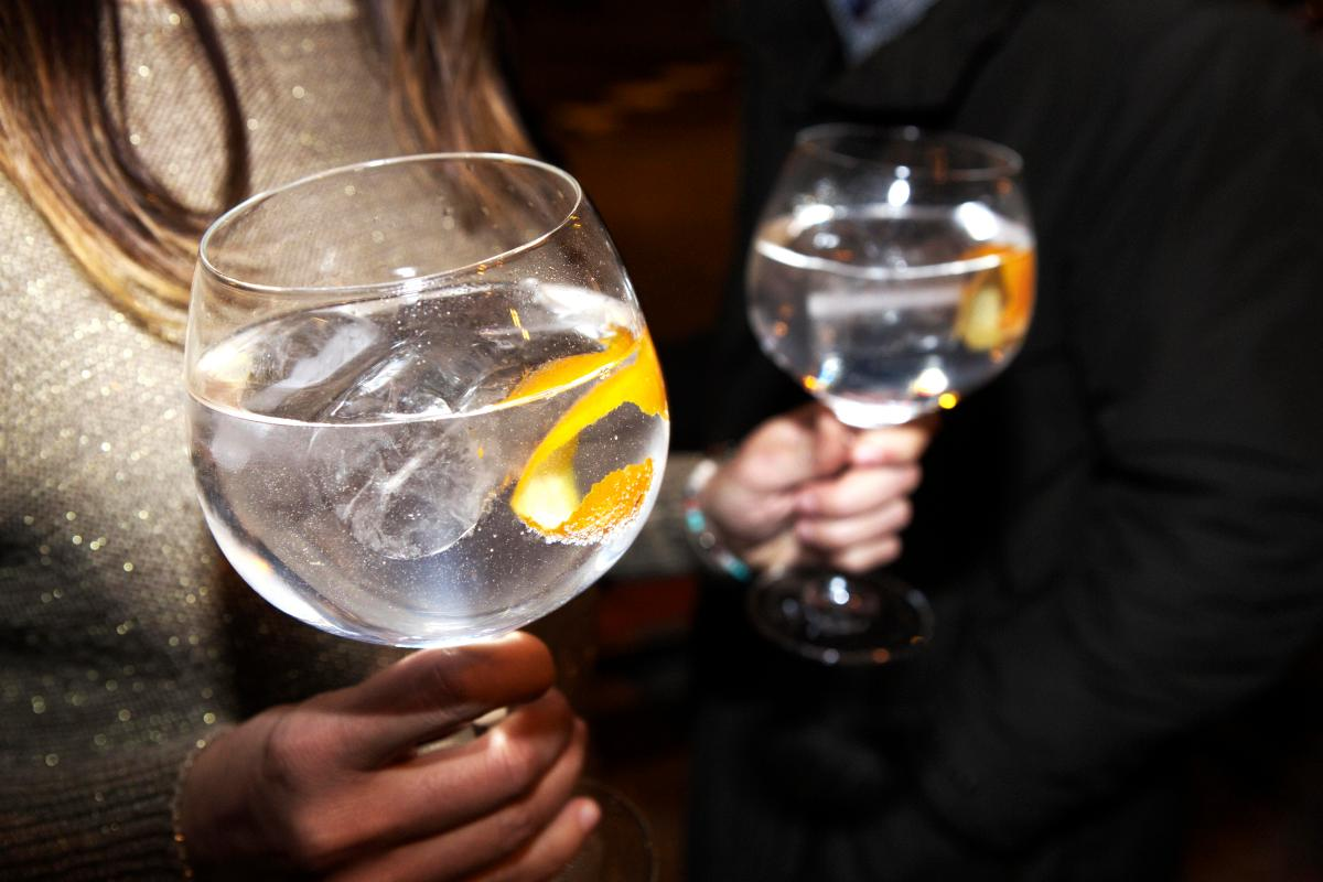 Britain's Gin Lovers Hit With Hefty Price Hike As Retailers Increase Cost Of The Spirit photo