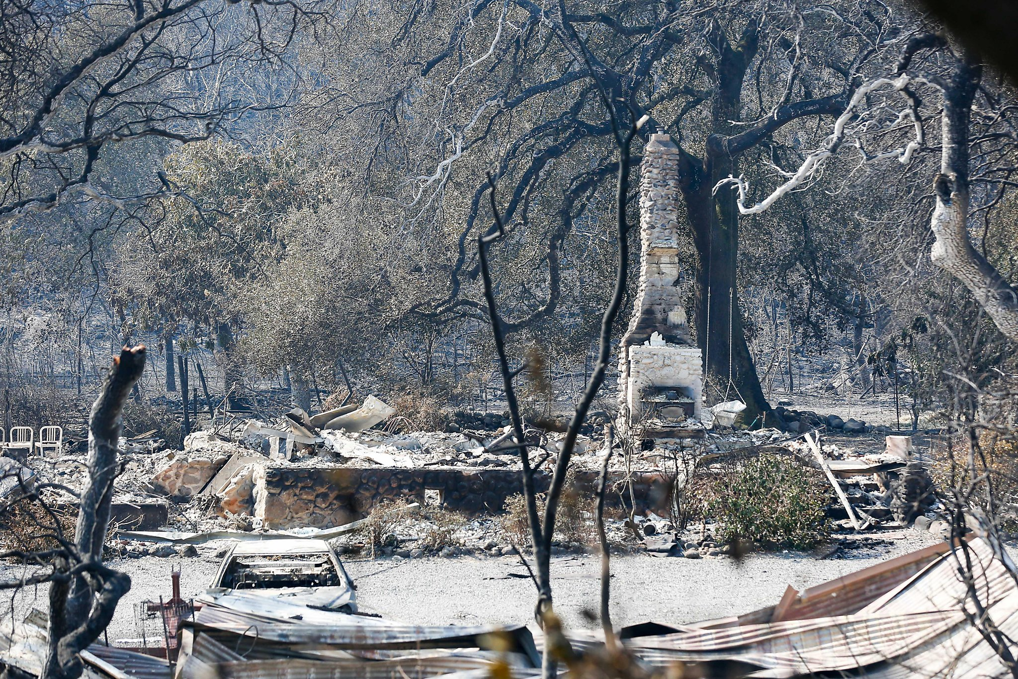 White Rock Vineyards Assesses Fire Damage, Looks To Rebuild photo