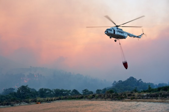 Wildfires Trample California?s $58bn Wine Industry photo