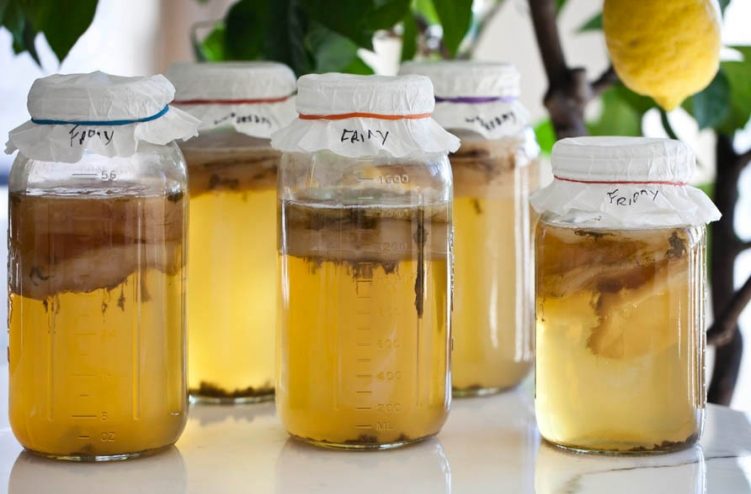 Reduce bloating by swapping booze for kombucha photo