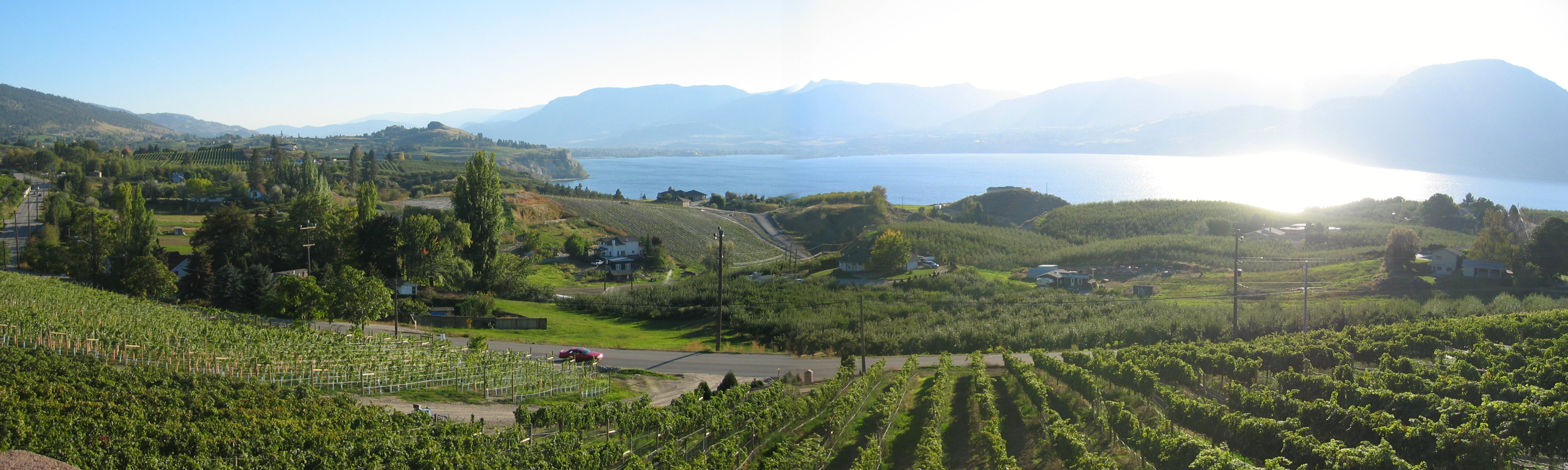 Arterra Wines Canada Buys Laughing Stock Vineyards photo