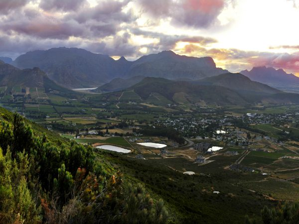 Franschhoek Vignerons come out tops in Platter photo
