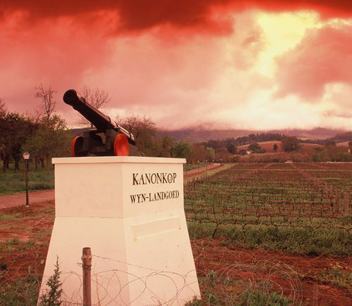kanonkop1 Kanonkop`s Abrie Beeslaar Wins World`s Best Winemaker of the Year for 3rd Time