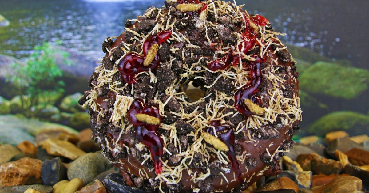 You Can Now Buy Doughnuts Sprinkled With Edible Insects photo