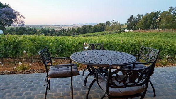 vineyards at kunjani e1511963393303 Kunjani Wines Opens New Tasting Room And Restaurant Near Stellenbosch