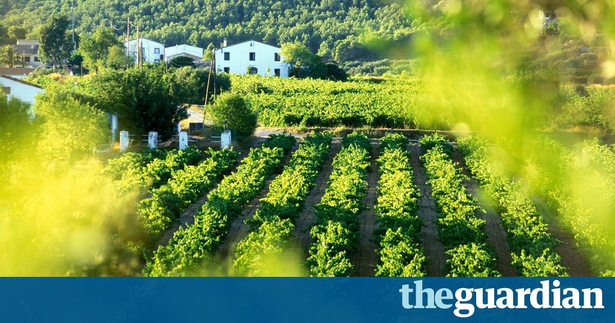 A Toast To Catalonia's Wines photo
