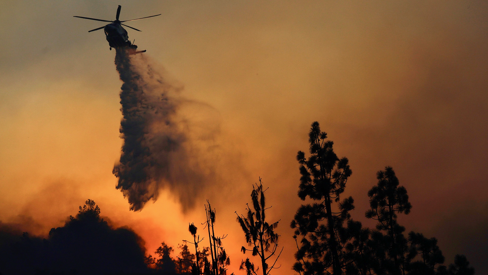 Winemakers Worry As Wildfires Rage In Southern California photo