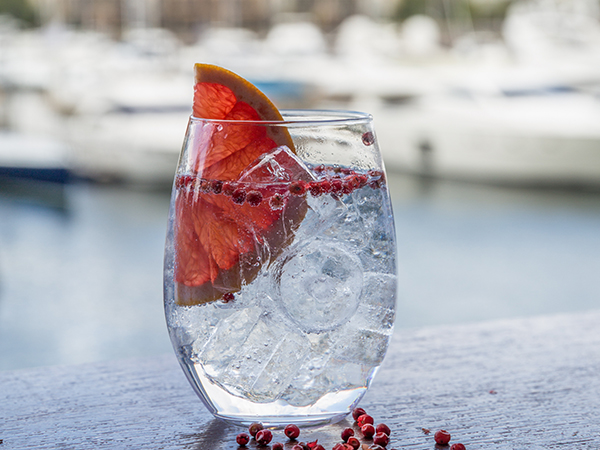 The Gin Dock, Cape Town's New Harbourside Pop-up Gin Bar photo