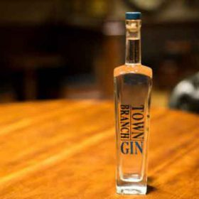 Town Branch Distillery Launches Gin photo