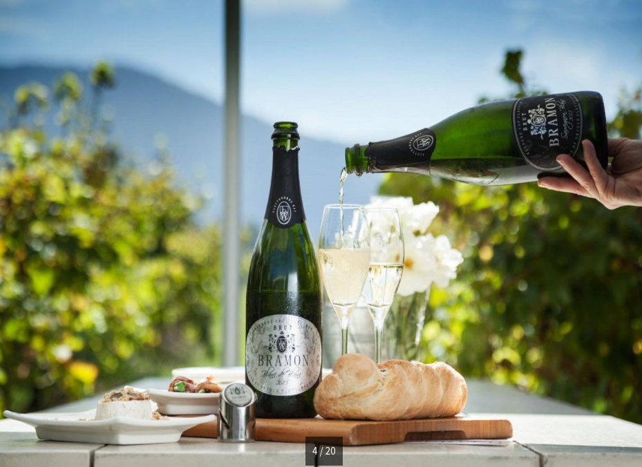 Bramon Wine Estate near Plettenburg Bay is up for auction photo
