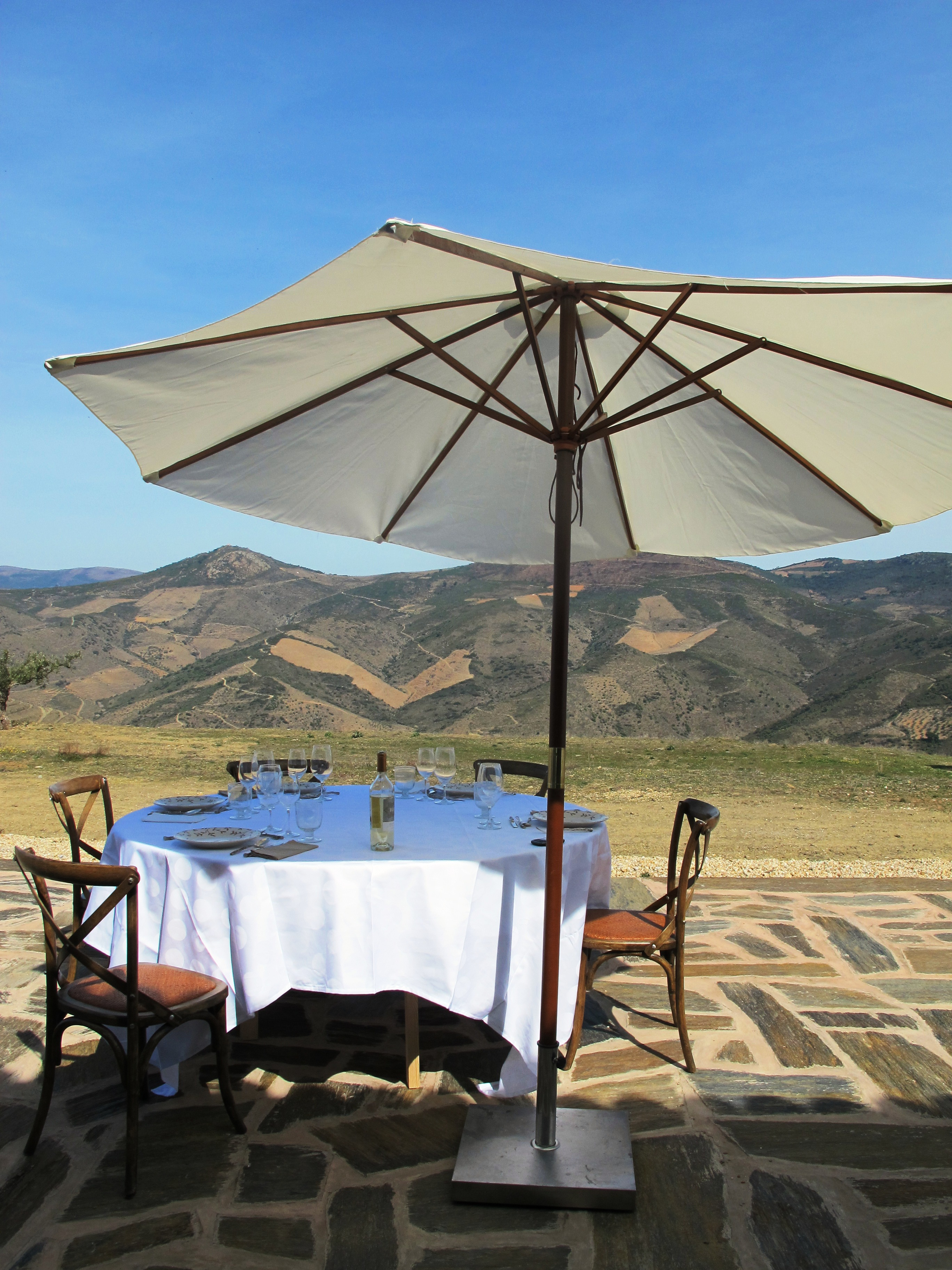 Intimate & Insightful Douro Wine Tastings & Tours ? Join Me! photo