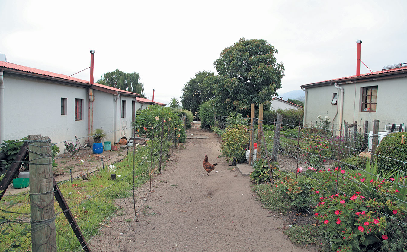 Sa Agriculture's Housing Dilemma: A Farmer's Perspective photo