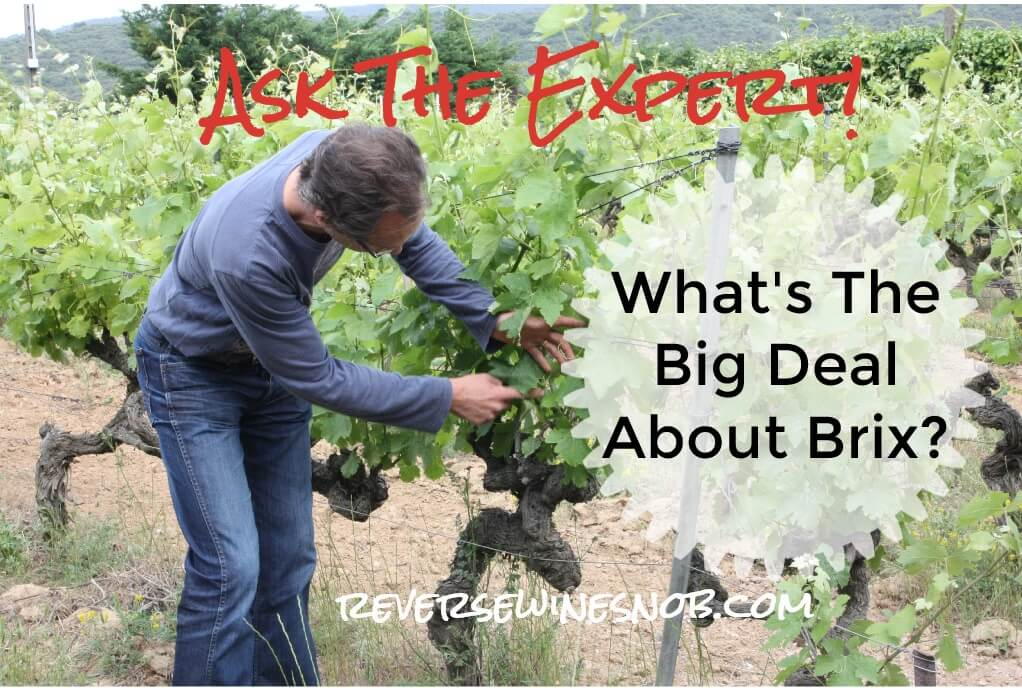 What's The Big Deal About Brix? Ask The Expert! ? Reverse Wine Snob® photo