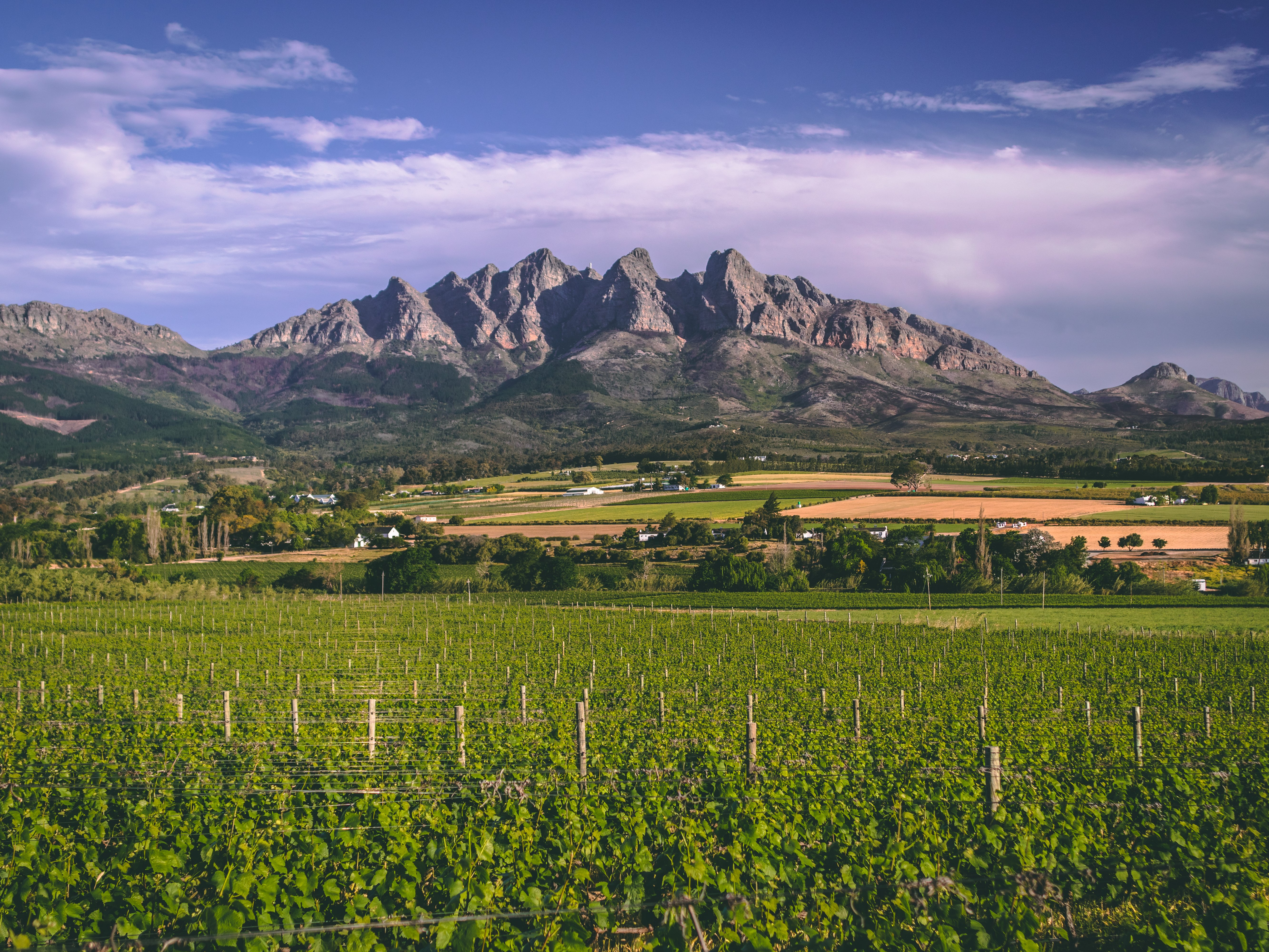 A Winelands Getaway In Wellington Not To Be Missed photo