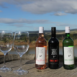 Wine Of The Week: Little Big Wines Is Your New Picnic Companion photo