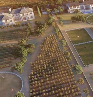 Overwhelming Response To Sale Of Markus Jooste's Exclusive Val De Vie Plot photo
