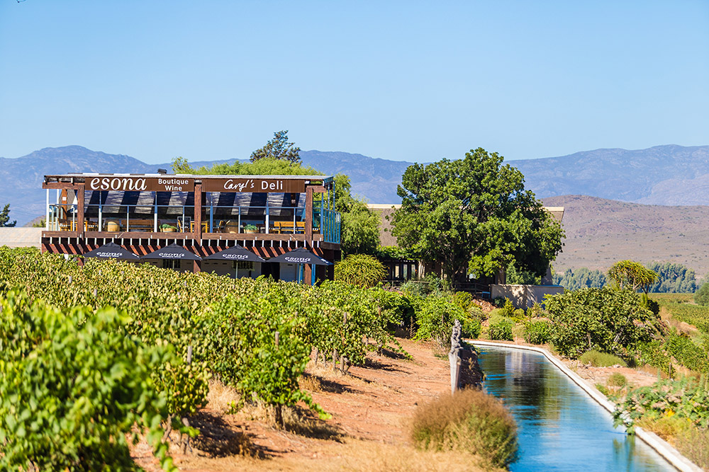 One-of-a-kind Wine Tasting Experience At Esona Boutique Winery photo