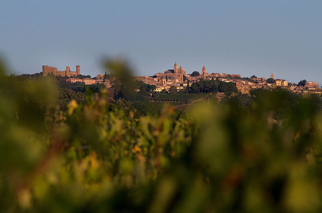 The Making Of Montalcino photo